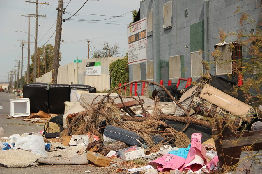 An illegal waste disposal site in oakland ca trees, couches, junk