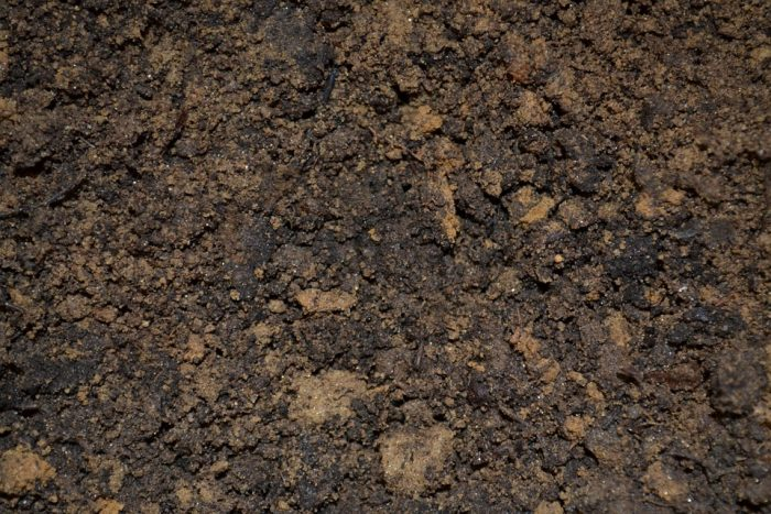 Free Delivery Of Fill Dirt And Soil In The San Francisco